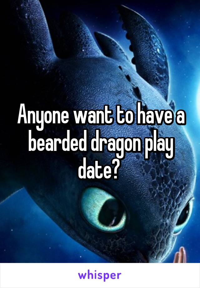 Anyone want to have a bearded dragon play date?
