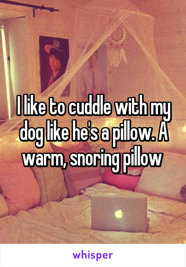 I like to cuddle with my dog like he's a pillow. A warm, snoring pillow