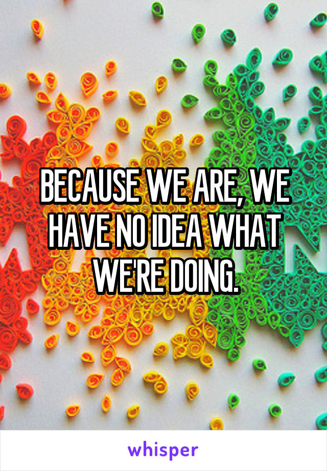BECAUSE WE ARE, WE HAVE NO IDEA WHAT WE'RE DOING.