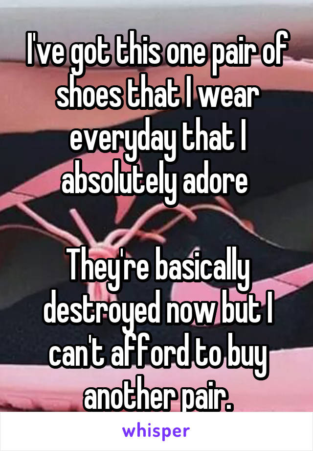 I've got this one pair of shoes that I wear everyday that I absolutely adore   They're basically destroyed now but I can't afford to buy another pair.