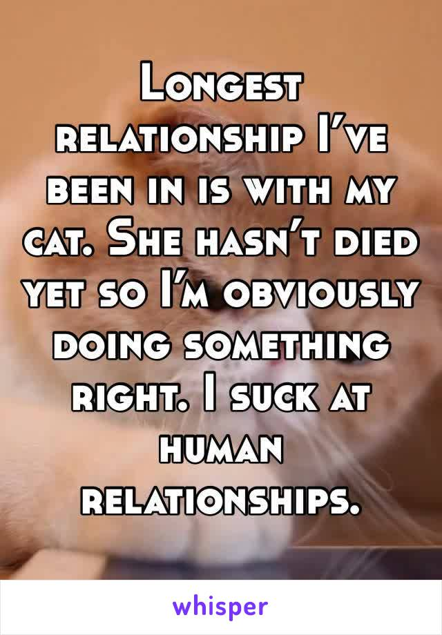 Longest relationship I've been in is with my cat. She hasn't died yet so I'm obviously doing something right. I suck at human relationships.
