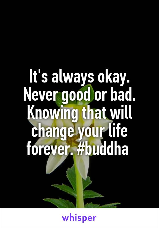 It's always okay. Never good or bad. Knowing that will change your life forever. #buddha