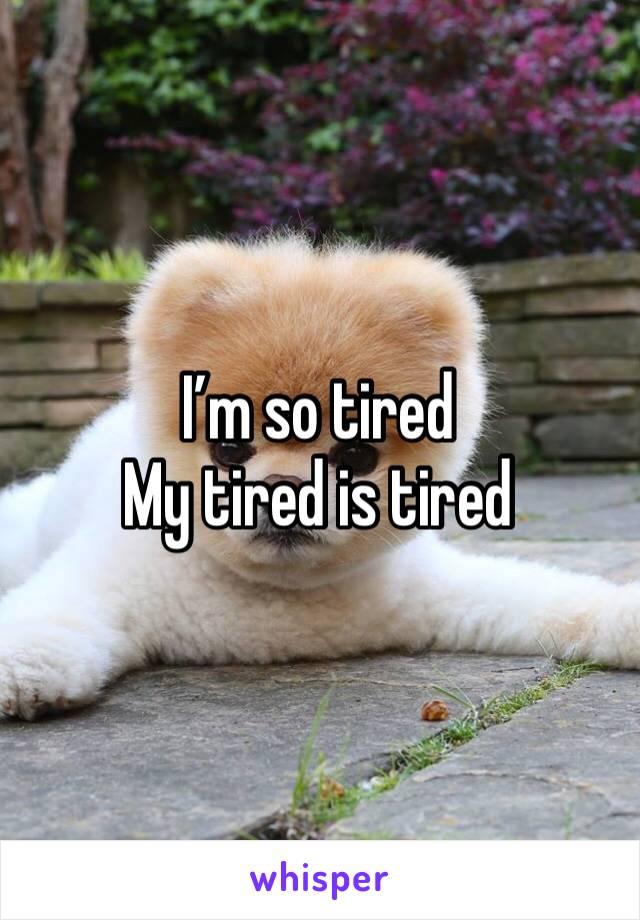 I'm so tired My tired is tired