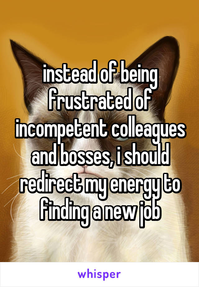 instead of being frustrated of incompetent colleagues and bosses, i should redirect my energy to finding a new job