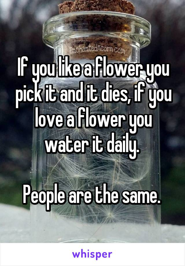If you like a flower you pick it and it dies, if you love a flower you water it daily.   People are the same.