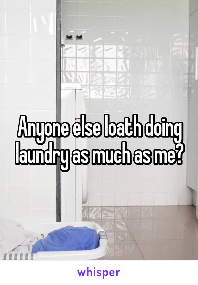 Anyone else loath doing laundry as much as me?