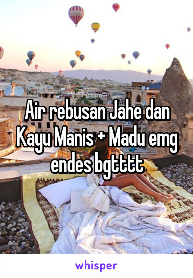 Air rebusan Jahe dan Kayu Manis + Madu emg endes bgtttt