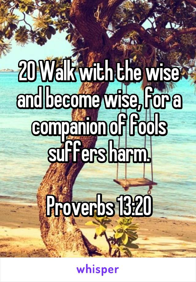 20 Walk with the wise and become wise, for a companion of fools suffers harm.  Proverbs 13:20