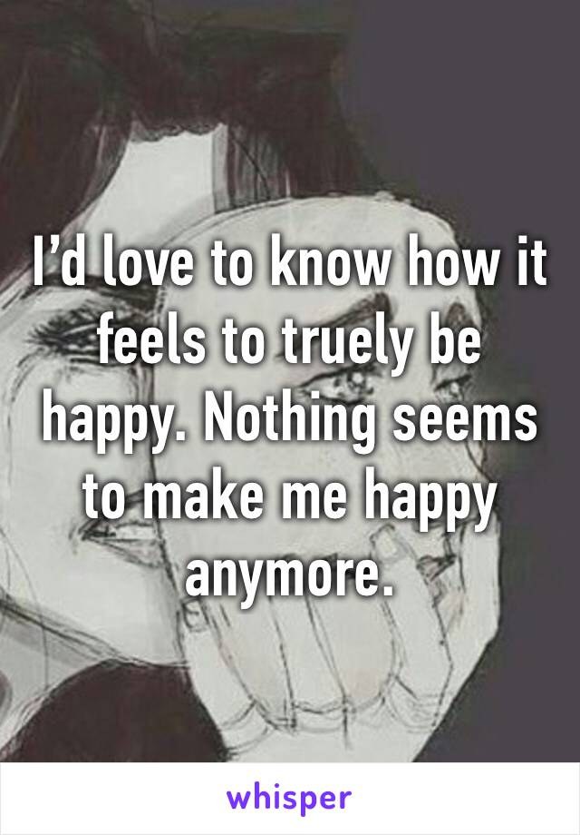 I'd love to know how it feels to truely be happy. Nothing seems to make me happy anymore.