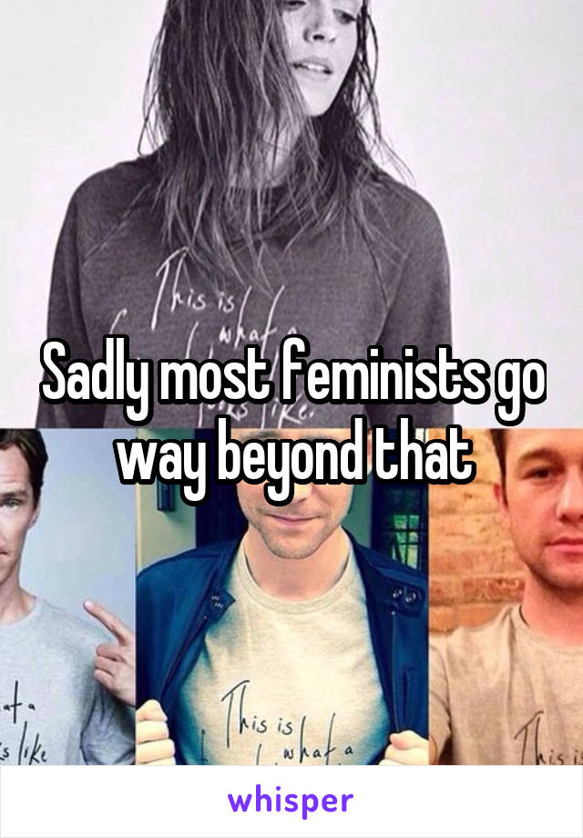 Sadly most feminists go way beyond that
