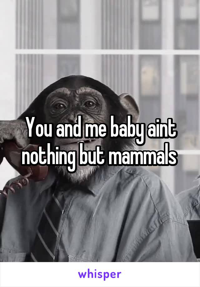You and me baby aint nothing but mammals
