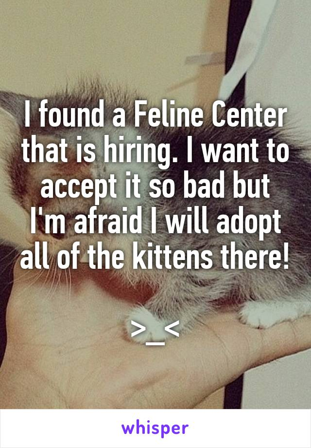 I found a Feline Center that is hiring. I want to accept it so bad but I'm afraid I will adopt all of the kittens there!  >_<