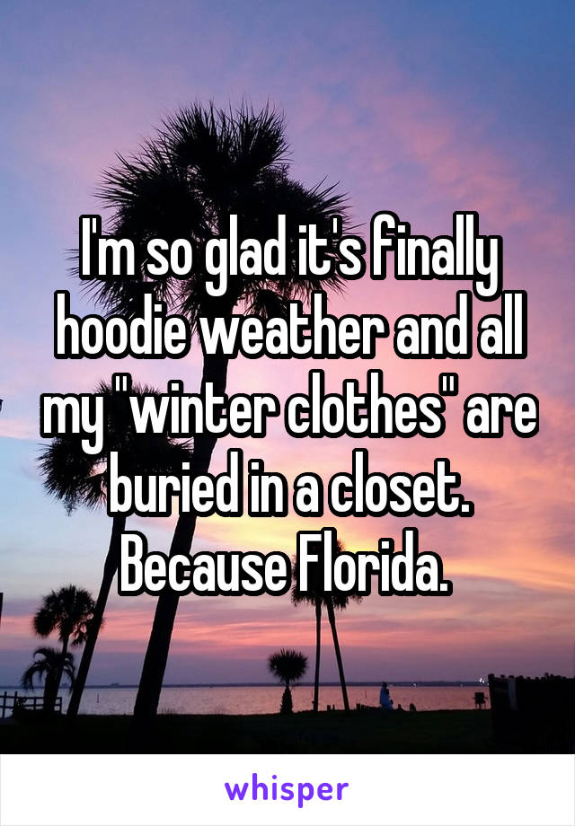 "I'm so glad it's finally hoodie weather and all my ""winter clothes"" are buried in a closet. Because Florida."