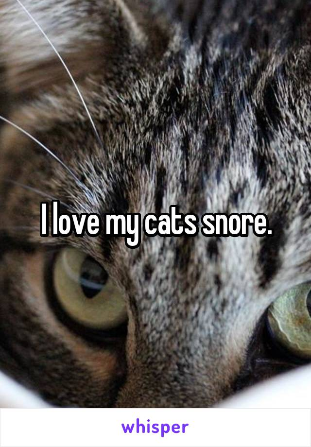 I love my cats snore.