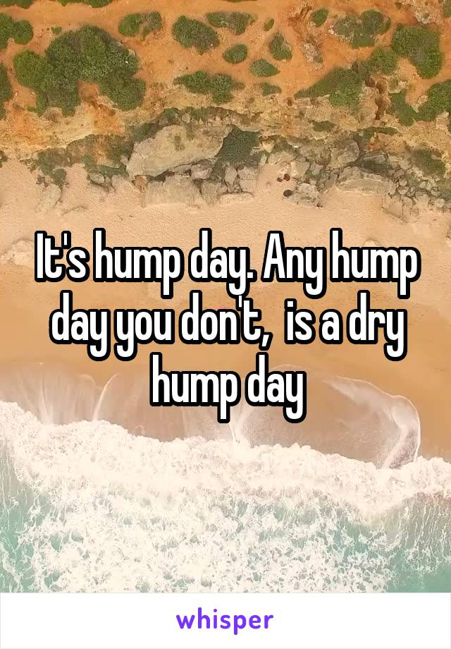 It's hump day. Any hump day you don't,  is a dry hump day