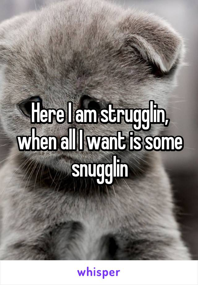 Here I am strugglin, when all I want is some snugglin