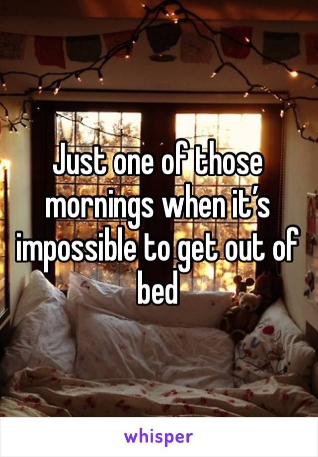 Just one of those mornings when it's impossible to get out of bed