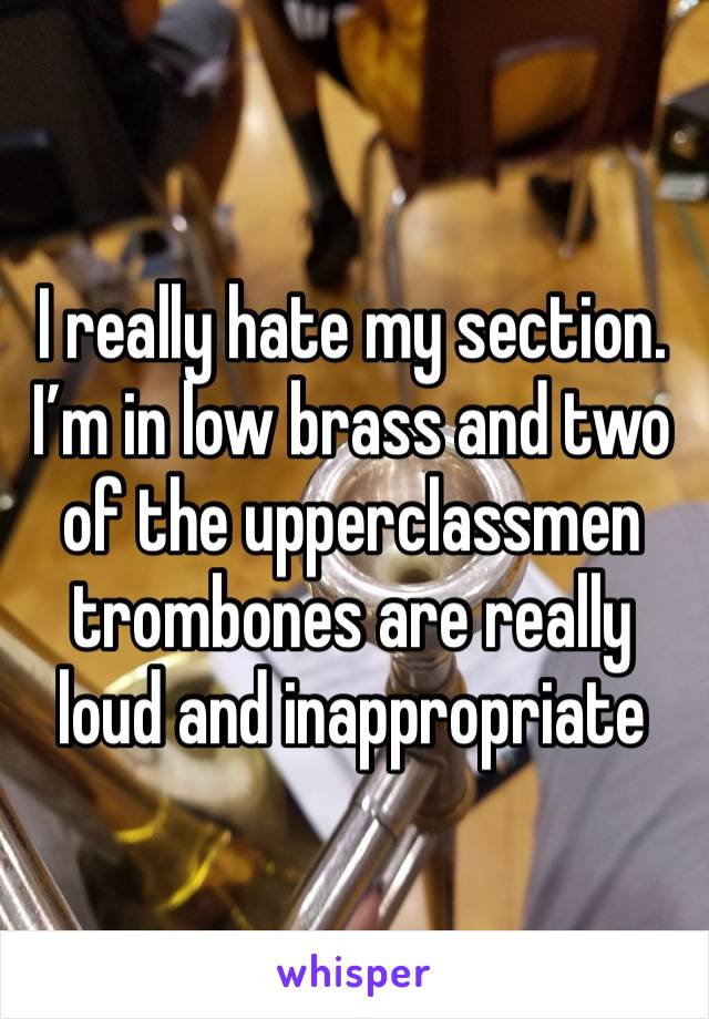 I really hate my section. I'm in low brass and two of the upperclassmen trombones are really loud and inappropriate