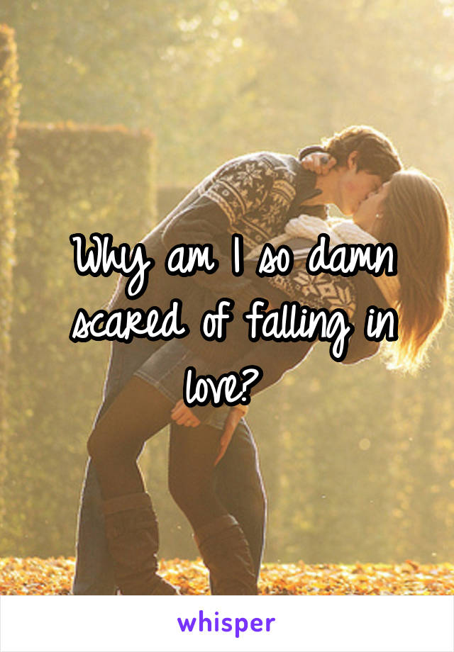 Why am I so damn scared of falling in love?