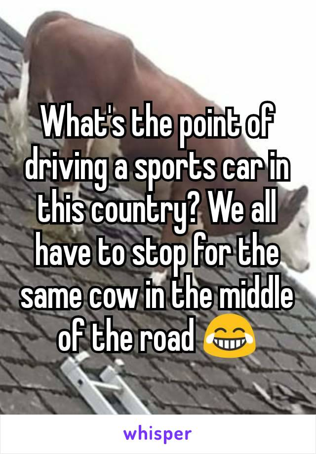 What's the point of driving a sports car in this country? We all have to stop for the same cow in the middle of the road 😂