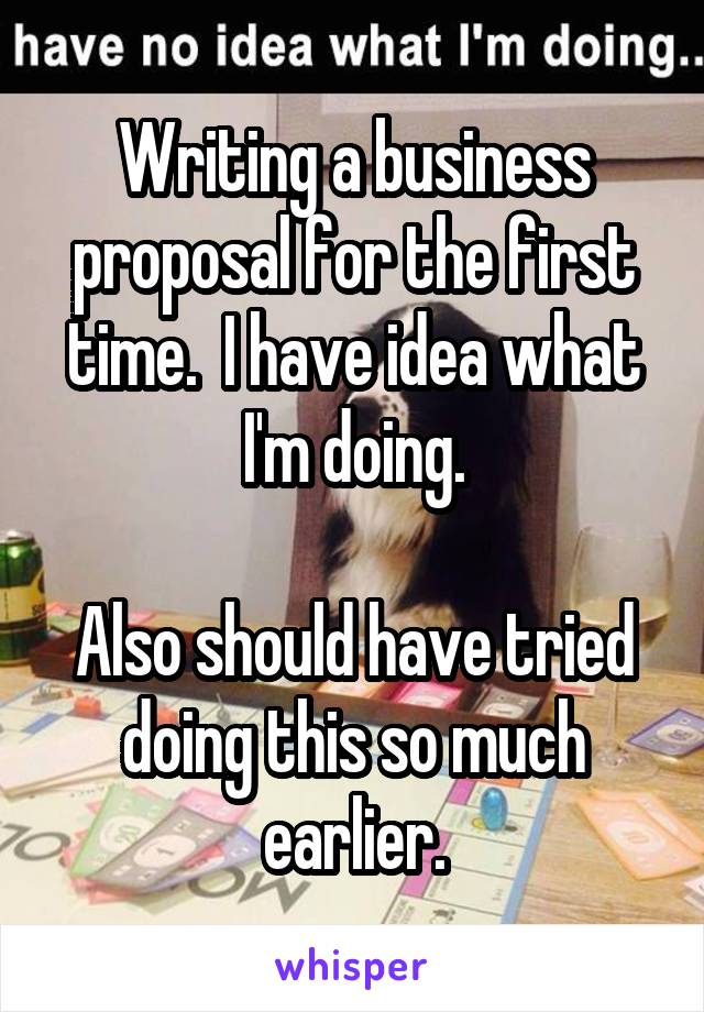 Writing a business proposal for the first time.  I have idea what I'm doing.  Also should have tried doing this so much earlier.