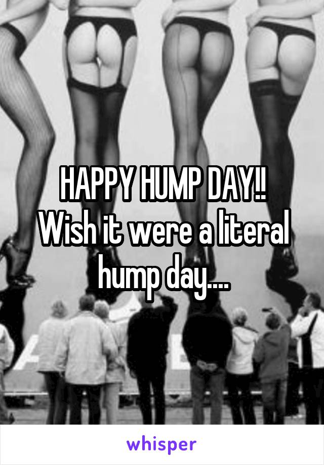 HAPPY HUMP DAY!! Wish it were a literal hump day....