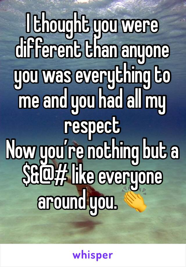 I thought you were different than anyone  you was everything to me and you had all my respect  Now you're nothing but a $&@# like everyone around you. 👏