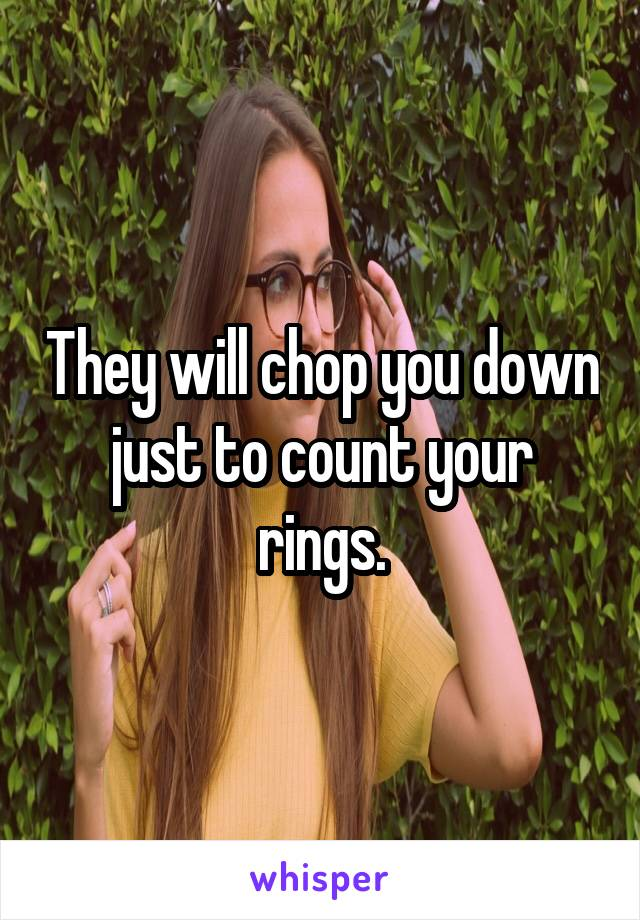 They will chop you down just to count your rings.