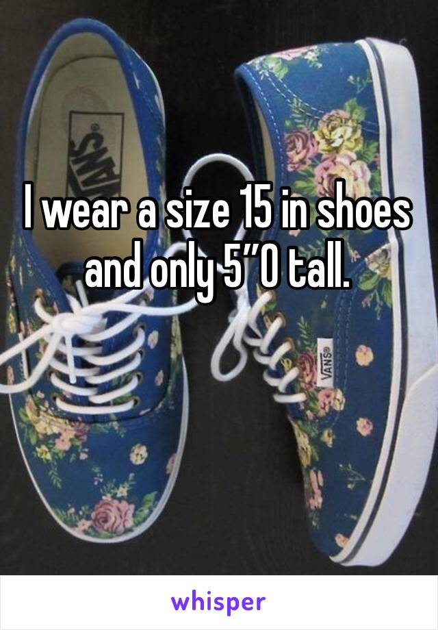 "I wear a size 15 in shoes and only 5""0 tall."