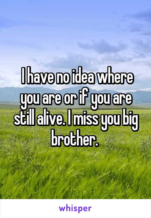 I have no idea where you are or if you are still alive. I miss you big brother.