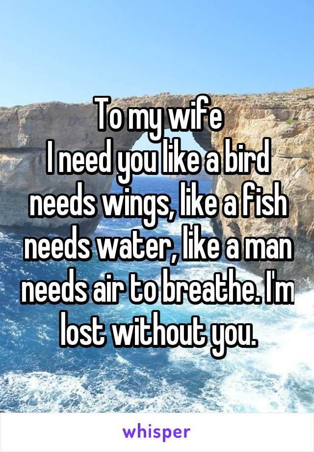 To my wife I need you like a bird needs wings, like a fish needs water, like a man needs air to breathe. I'm lost without you.