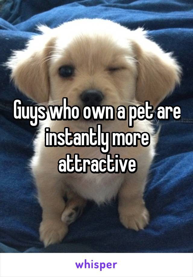 Guys who own a pet are instantly more attractive