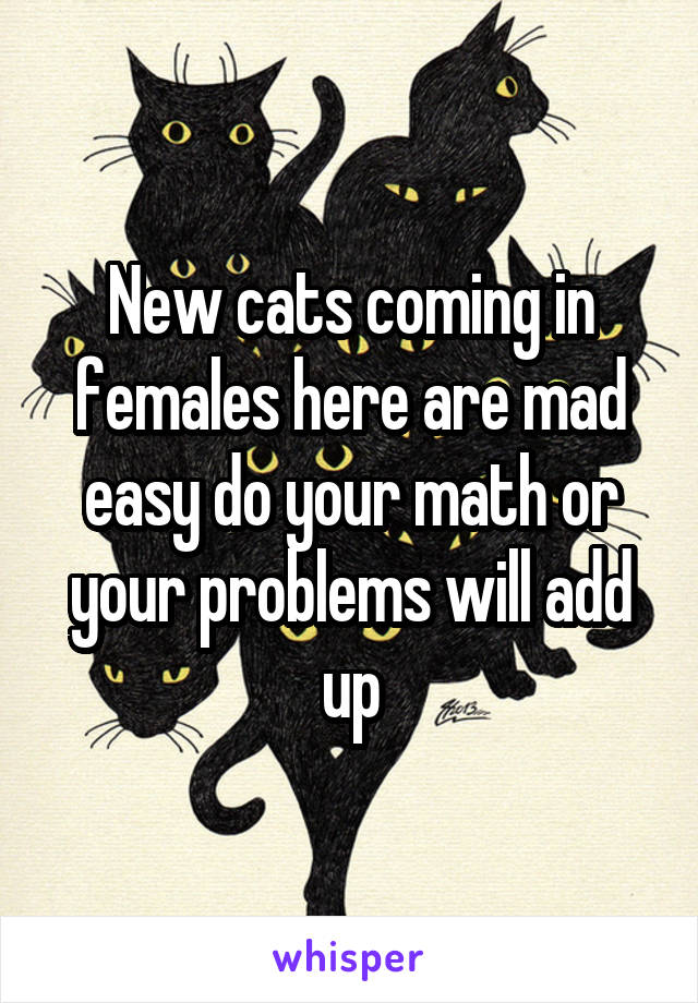 New cats coming in females here are mad easy do your math or your problems will add up