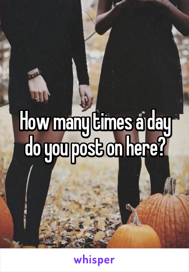 How many times a day do you post on here?