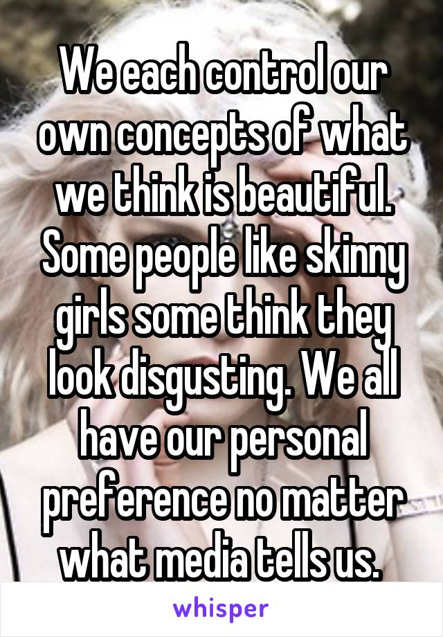 We each control our own concepts of what we think is beautiful. Some people like skinny girls some think they look disgusting. We all have our personal preference no matter what media tells us.