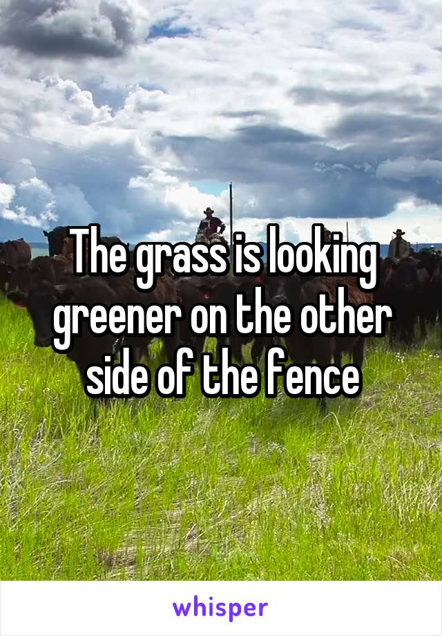 The grass is looking greener on the other side of the fence