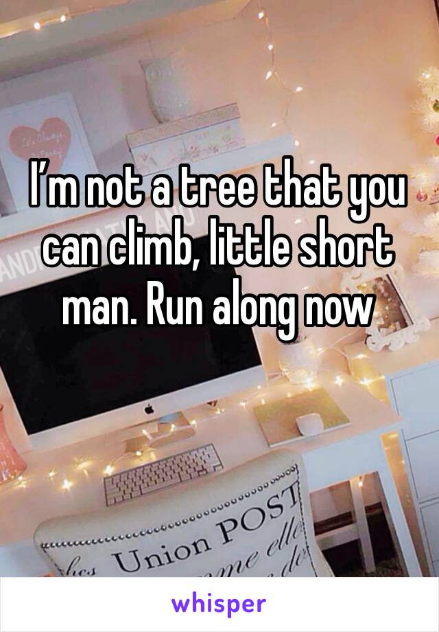 I'm not a tree that you can climb, little short man. Run along now