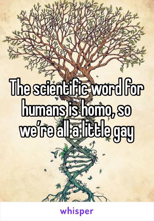 The scientific word for humans is homo, so we're all a little gay
