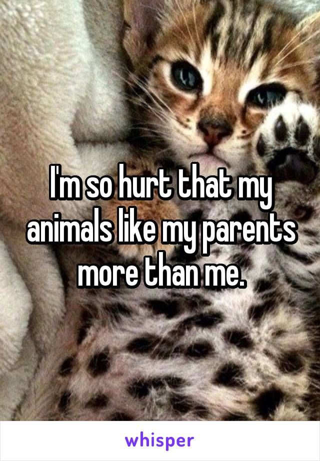 I'm so hurt that my animals like my parents more than me.