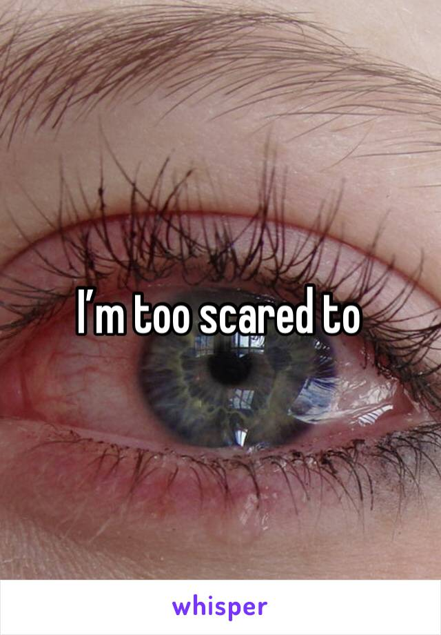 I'm too scared to