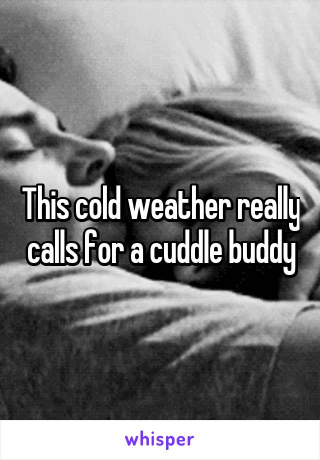 This cold weather really calls for a cuddle buddy