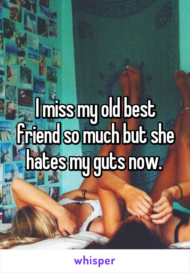 I miss my old best friend so much but she hates my guts now.