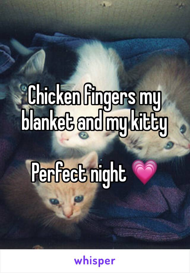 Chicken fingers my blanket and my kitty   Perfect night 💗