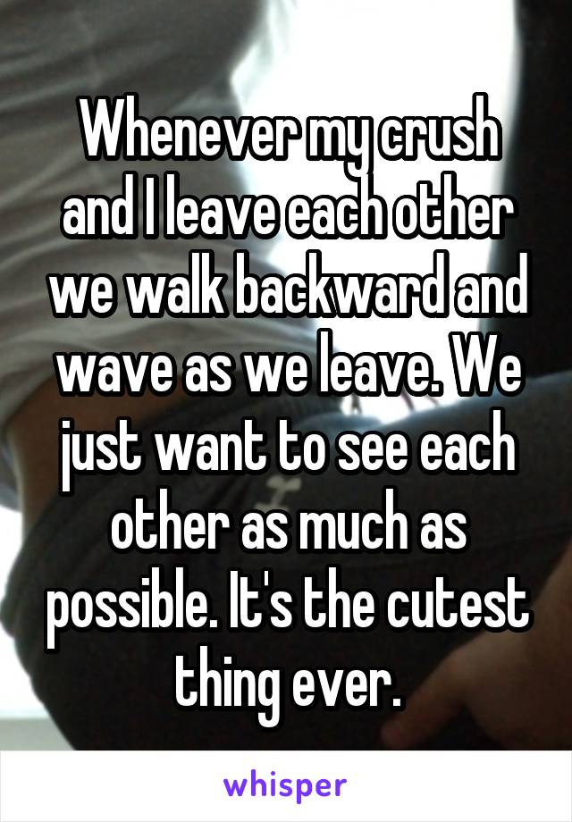 Whenever my crush and I leave each other we walk backward and wave as we leave. We just want to see each other as much as possible. It's the cutest thing ever.