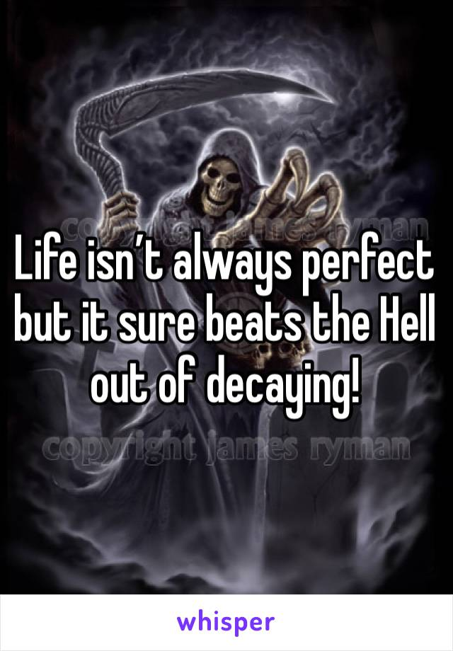 Life isn't always perfect but it sure beats the Hell out of decaying!