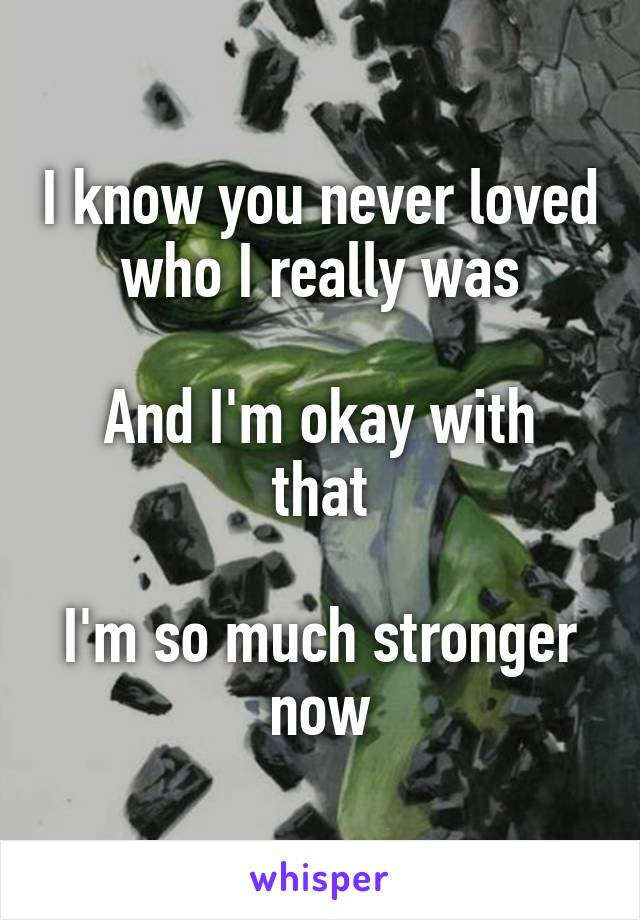 I know you never loved who I really was  And I'm okay with that  I'm so much stronger now