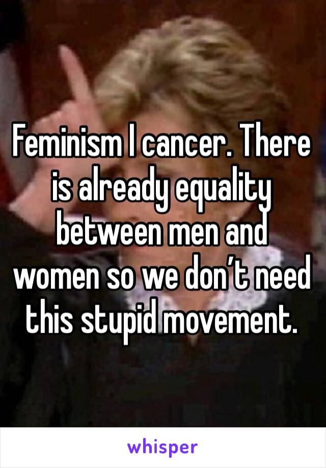 Feminism I cancer. There is already equality between men and women so we don't need this stupid movement.