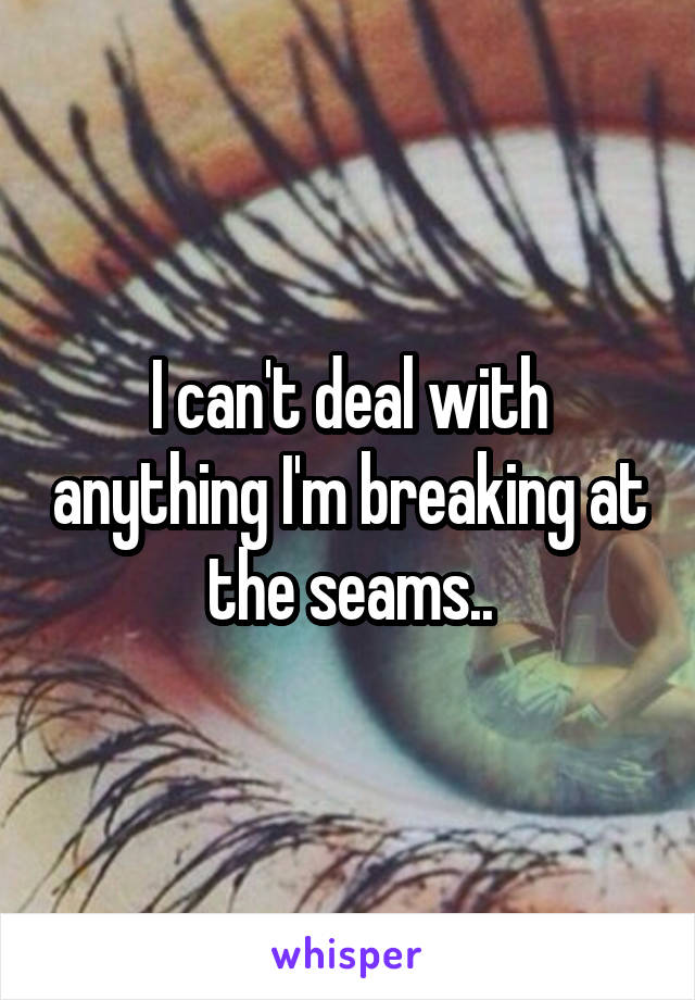 I can't deal with anything I'm breaking at the seams..