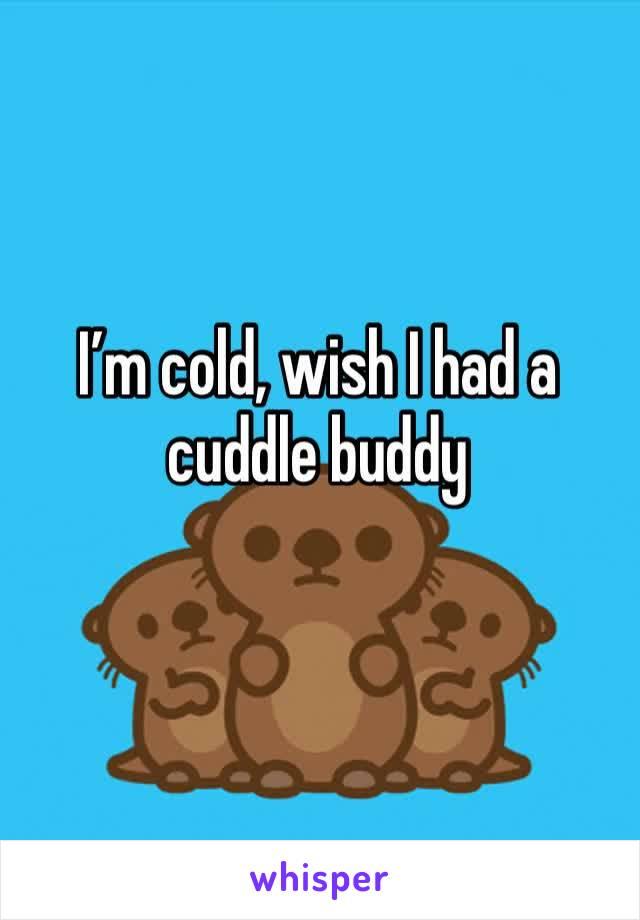 I'm cold, wish I had a cuddle buddy