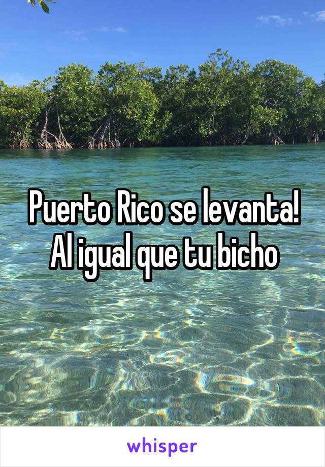 Puerto Rico se levanta! Al igual que tu bicho